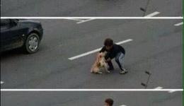 Учите детей не обижать животных!